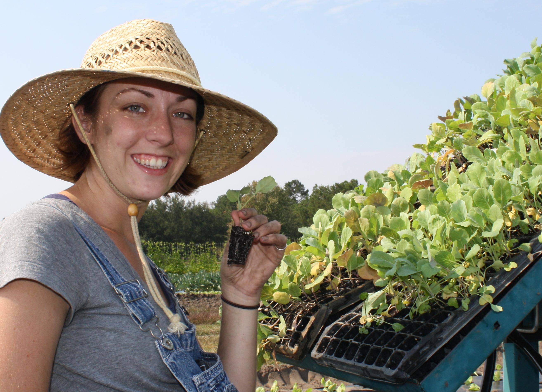 Nikki Farming